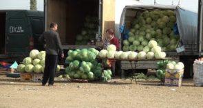 Овощной рынок переехал: первые впечатления сальчан