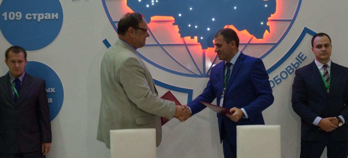 На Дону внедрят региональную стратегию развития мясного скотоводства
