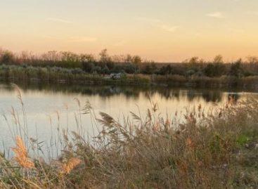 Недалеко от Ивановки в воду упала «Лада-Гранта»: пожилой водитель погиб на месте аварии