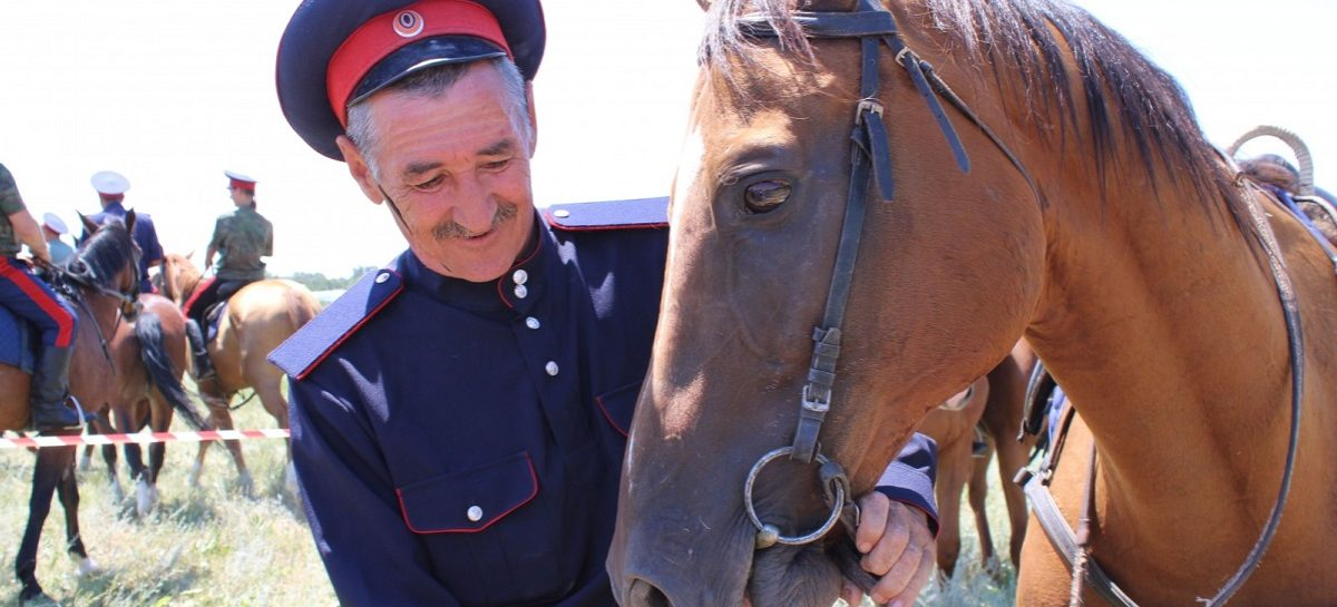 Будущей весной донские казаки совершат конный переход протяженностью 1200 километров
