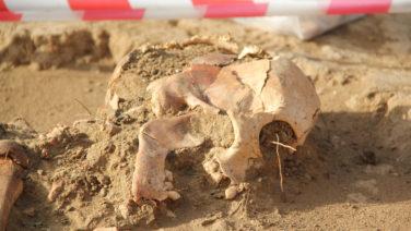 Искали Средневековье, нашли — Бронзовый век: международная группа ученых исследовала древнее захоронение близ села Ивановка
