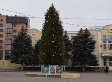 Сальчан приглашают встретить Новый год у главной ёлки города