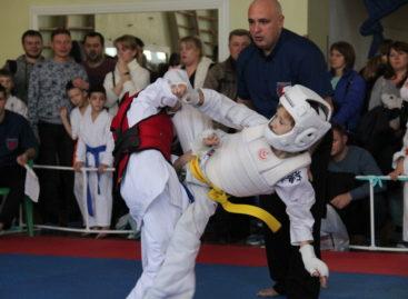 Каратисты ДЮСШ представили Сальский район  на «Кубке единства» в Шахтах