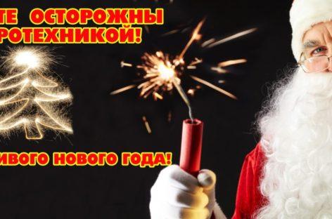 Чтобы в новогодние праздники не случилось пожаров и других   чрезвычайных происшествий