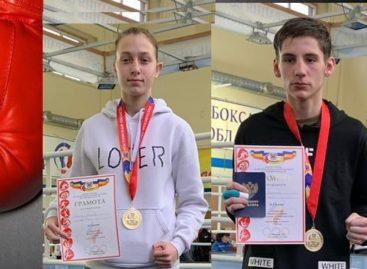 Спортивная школа Сальского района завоевала пять медалей на областном первенстве по боксу