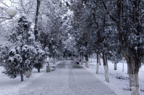 Сальчане дождались первого снега уже после Рождества