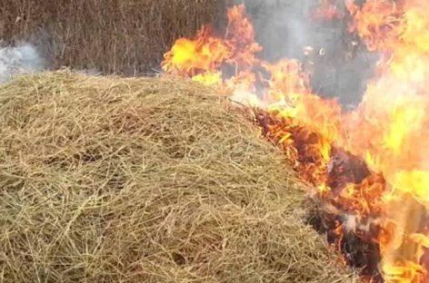 В Сандате сгорело порядка шести тонн сена