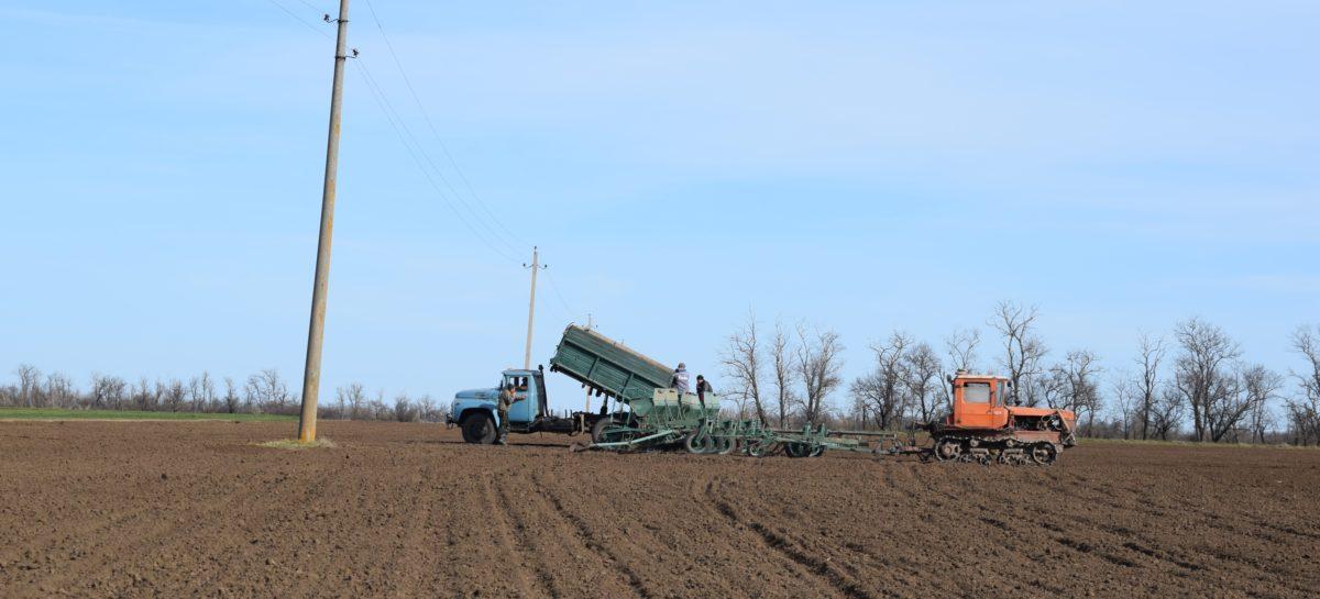 Осенние полевые работы выходят на финишную прямую
