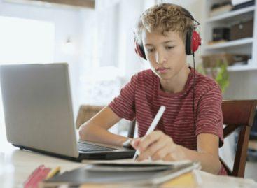 Как сальским ученикам войти в электронную школу?