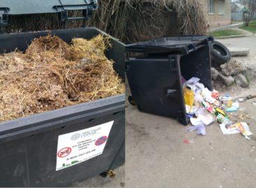 Перевернуть: нельзя беречь. Новые контейнеры для мусора не дают покоя некоторым сальчанам