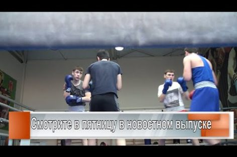 У сальских боксёров — 5 золотых медалей