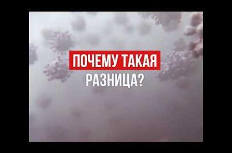 В России один из самых низких показателей заражения коронавирусом. Для этого приняты все необходимые меры