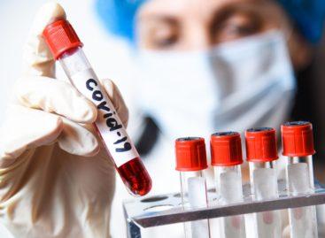Коронавирус в Сальском районе 20 ноября: зафиксирован 40-й случай смерти