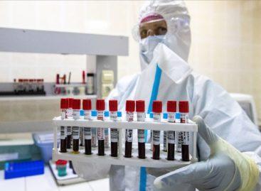 Коронавирус: какова ситуация в Сальском районе 31 июля