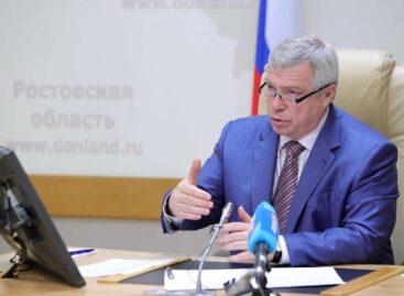 Василий Голубев взял под личный контроль вопросы получения мер поддержки