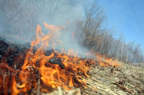 В Сальском районе начался самый пожароопасный период