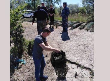 Предотвратили ущерб водным биоресурсам