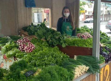 В Ростовской области возобновляют работу постоянно действующие ярмарки