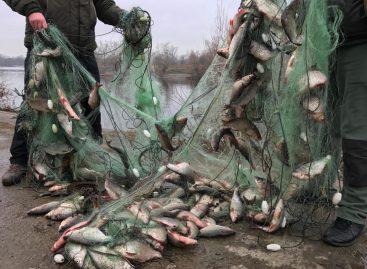 Установлена ответственность за несоблюдение требований к сохранению водных биологических ресурсов и среды их обитания