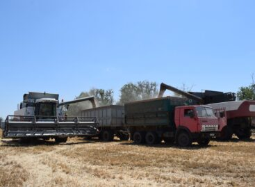 Более пяти тысяч тонн зерна нового урожая намолотили в базовом сельхозпредприятии села Бараники
