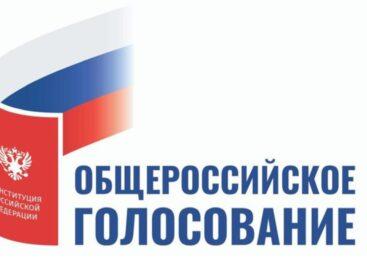 На Дону стартовал период активного наблюдения за ходом голосования по поправкам в Конституцию