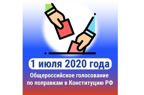 Как будет проходить голосование по поправкам в Конституцию 1 июля
