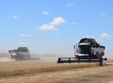 Хлеборобы Сальского района приступили к главной страде — уборке зерновых