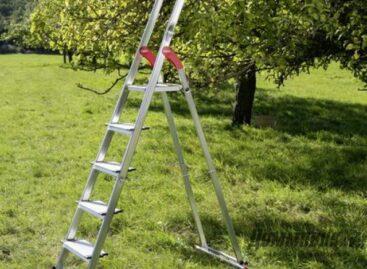 Сальчане травмировались, собирая урожай черешни