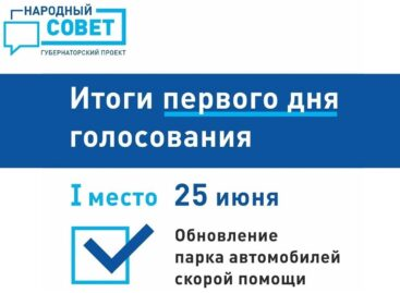 Подвели первые итоги голосования в рамках губернаторского проекта «Народный совет»