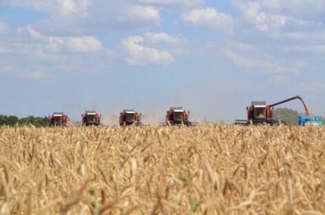 В Сальском районе стартует важная сельскохозяйственная кампания года — жатва-2020