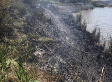 В Сальском районе в горящих камышах погиб мужчина