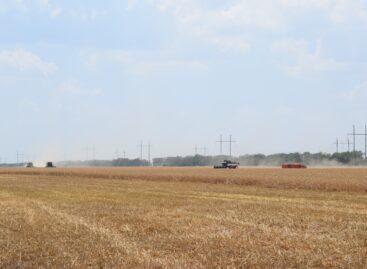 Жатва «Славян»: продолжается борьба за урожай-2020