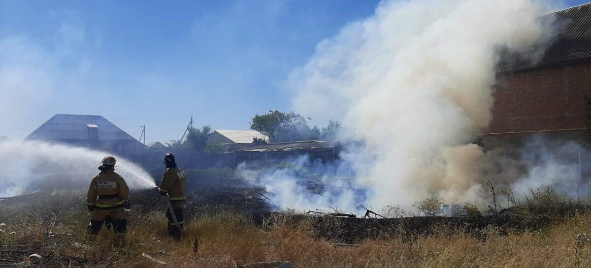 Жители улицы Цветаевой в Сальске были в ужасе, когда рядом с их домами загорелась сухая трава