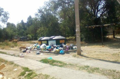 Мусор — по новому адресу: на улице Чернышевского старые контейнеры уже не работают
