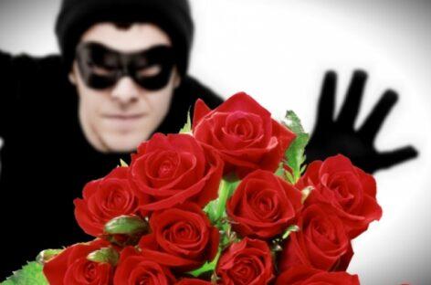 В Сальске с Аллеи Славы украли розы