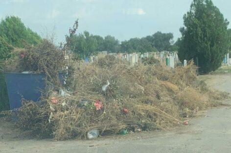 Почему на новом кладбище в Сальске снова появились мусорные кучи?