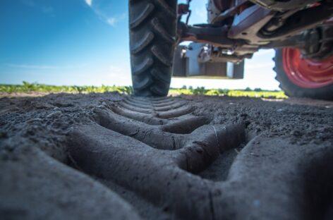 В Сальском районе с территории животноводческой фермы украли трактор МТЗ-82