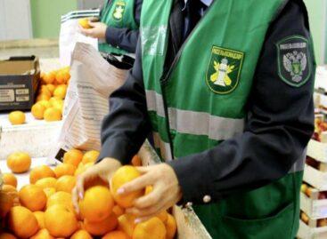 Сальских земледельцев, не соблюдающих законодательство в области карантина растений, будут штрафовать