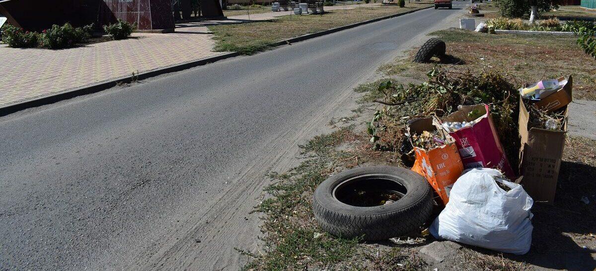 Сальский стиль: есть ли более цивилизованный способ сбора ТКО, чем мусор на обочину раз в неделю?