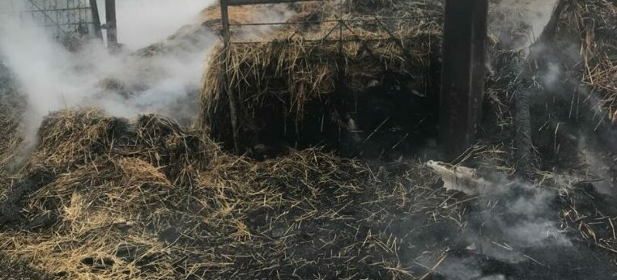 Поджог в Екатериновке: хозяева лишились 16-ти тонн сена
