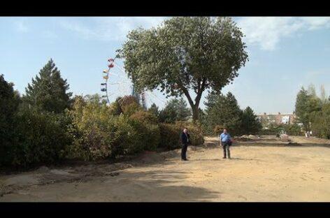 В сальском парке продолжается реконструкция: появился новый фонтан