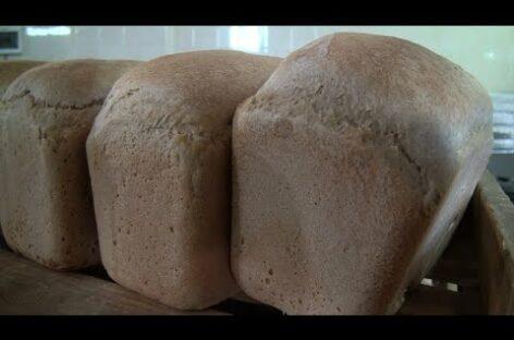 Сальский хлебокомбинат выпекает за сутки 9 тонн продукции