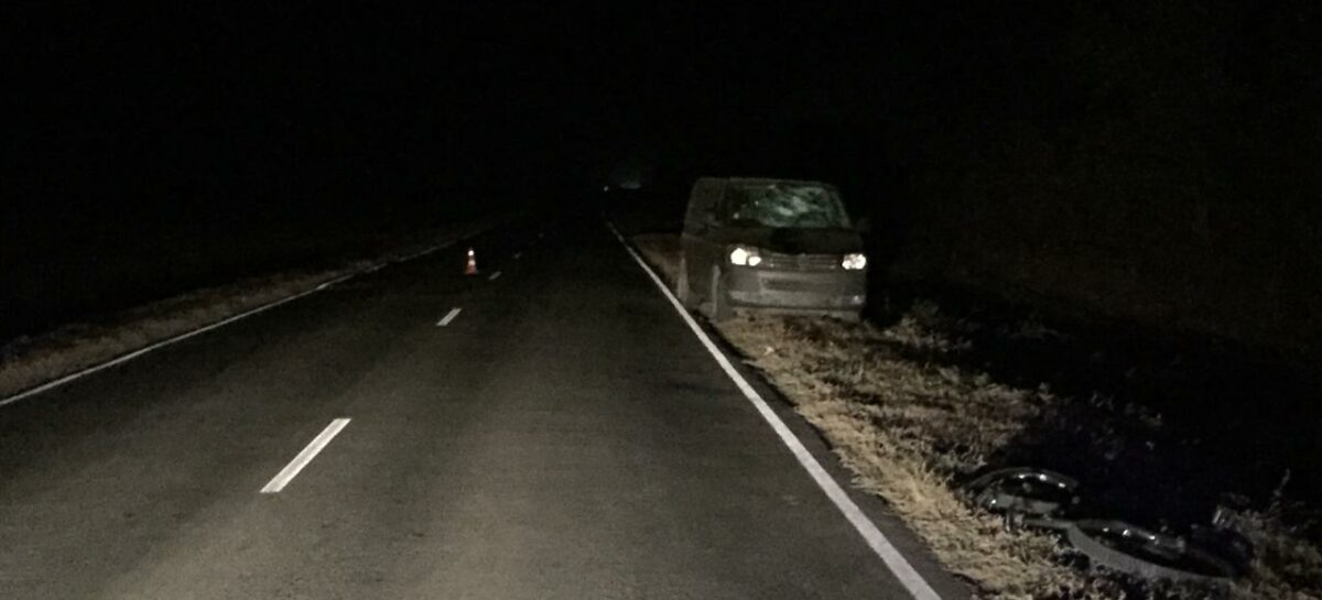 На ночной трассе пострадал житель посёлка Рыбасово