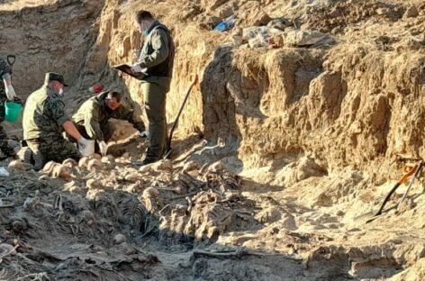 Сальские поисковики помогают на раскопках в Миллеровском районе