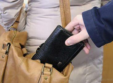 Пока сальчанка искала лекарства в аптеке, у неё вытащили из сумки документы и деньги