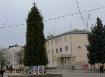 Праздник — близко: в центре Сальска установили новогоднюю елку