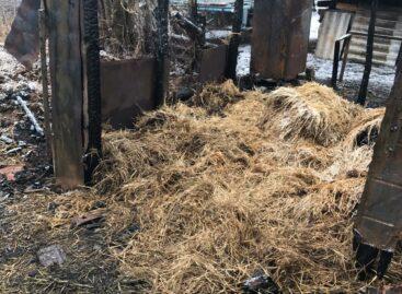 В Сальском районе вновь горел сенник