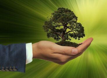 Сальская транспортная прокуратура выявила нарушения природоохранного законодательства