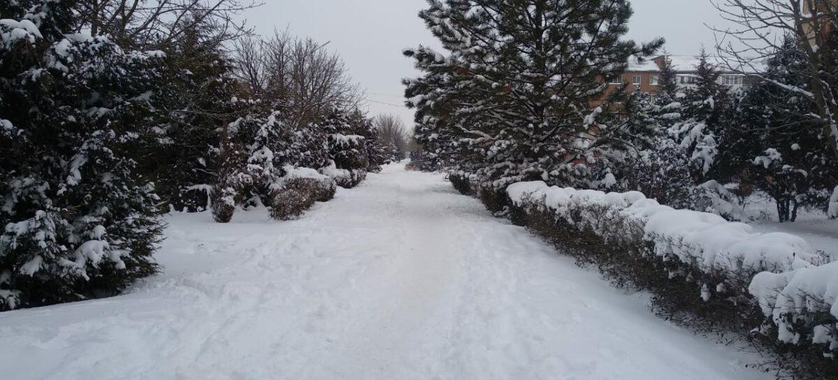 В День снега в Сальске и Сальском районе бушевала метель