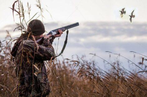 Новые правила охоты вступили в законную силу с января 2021 года